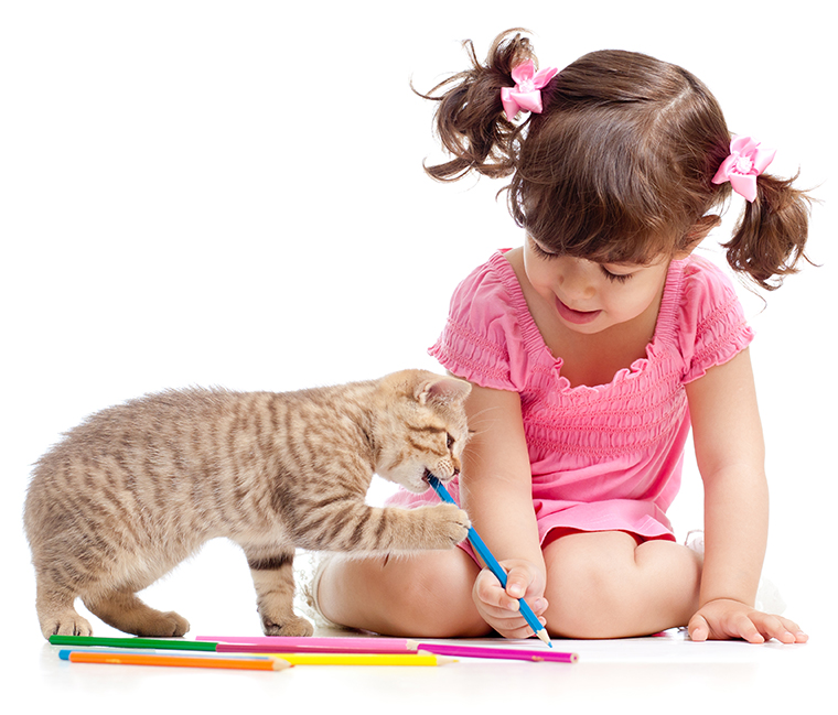 kitten with girl and colored pencils